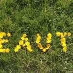 I cosmetici Bio: che cos'è l'Inci e a cosa serve